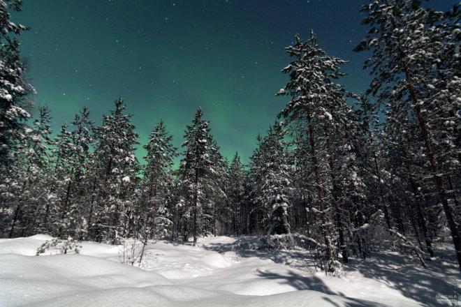 Moonlight walk with auroras