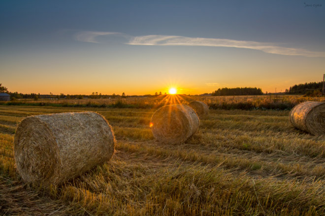 Haybale sunset