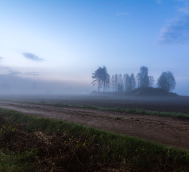 Beautiful mist night in countryside