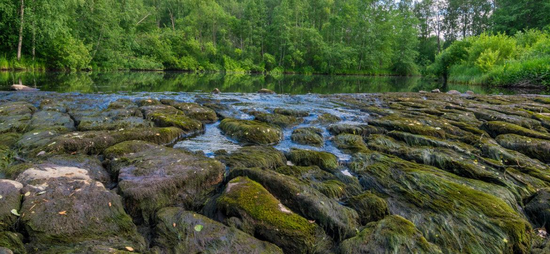 dryriver2