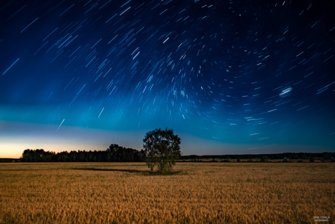 Startrails on a field