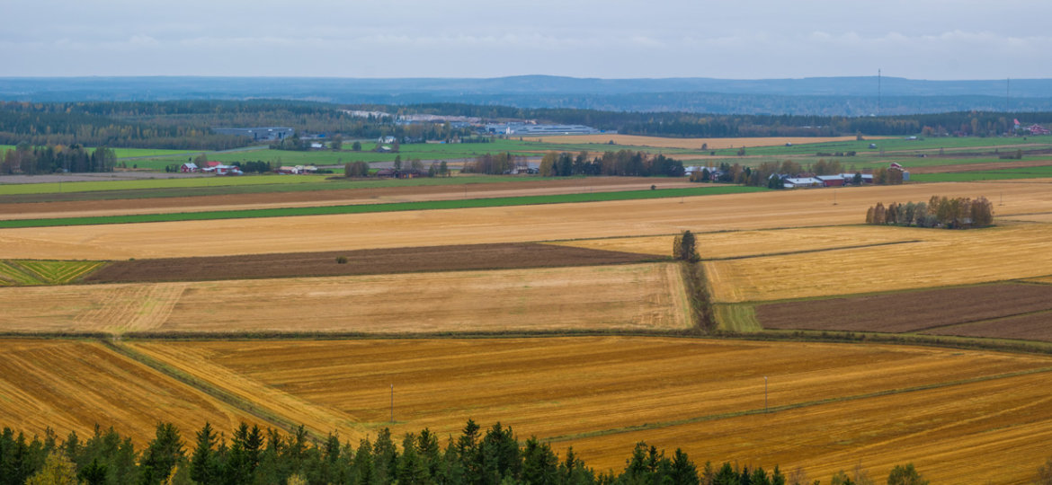 End of harvest panorama