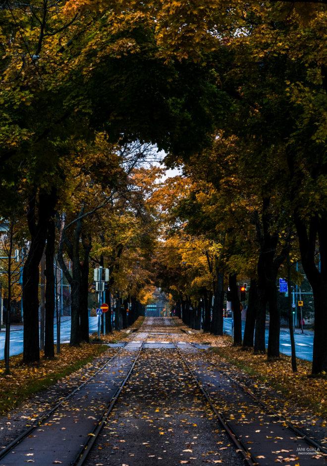 Railway autumn