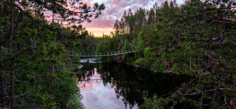 Bridge-in-the-morning