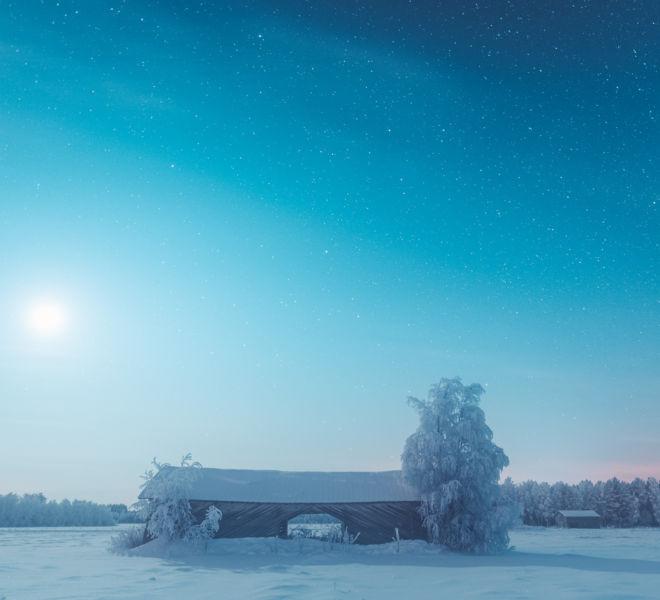 barninthemoonlight