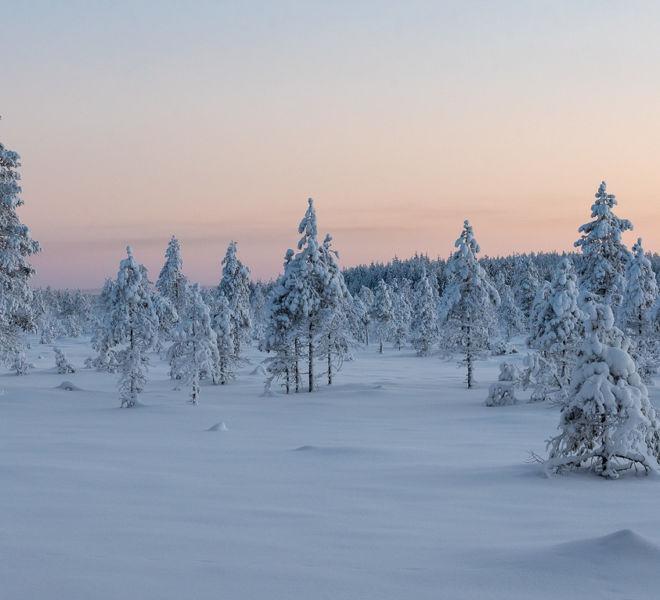 talviilta2