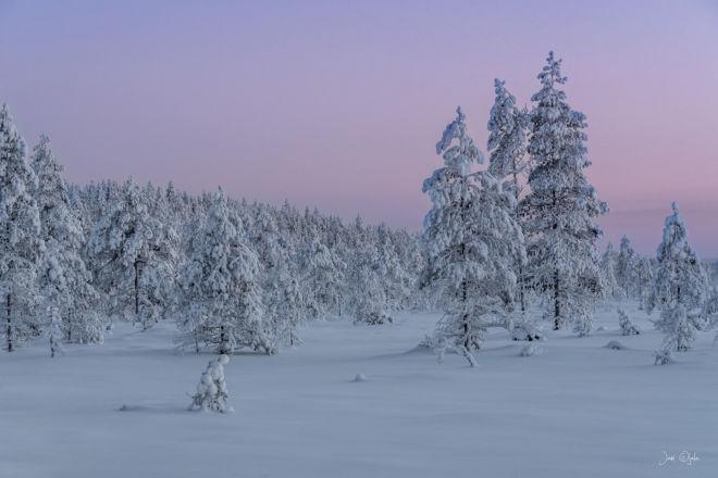 winterevening