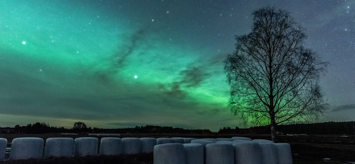 Countryside auroras