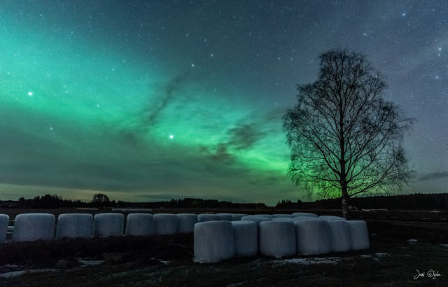 Countryside auroras